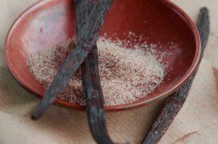 Echte Vanille selbst anbauen - So funktioniert der Anbau eines Luxus-Gewürz