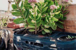 Hochbeet für die einfache Gartenarbeit