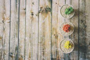 Pflegeleichte Zimmerpflanzen - Tipps und Tricks für mehr Grün im Eigenheim